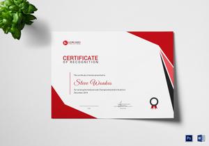 /1004/Certificate-of-Judo-5