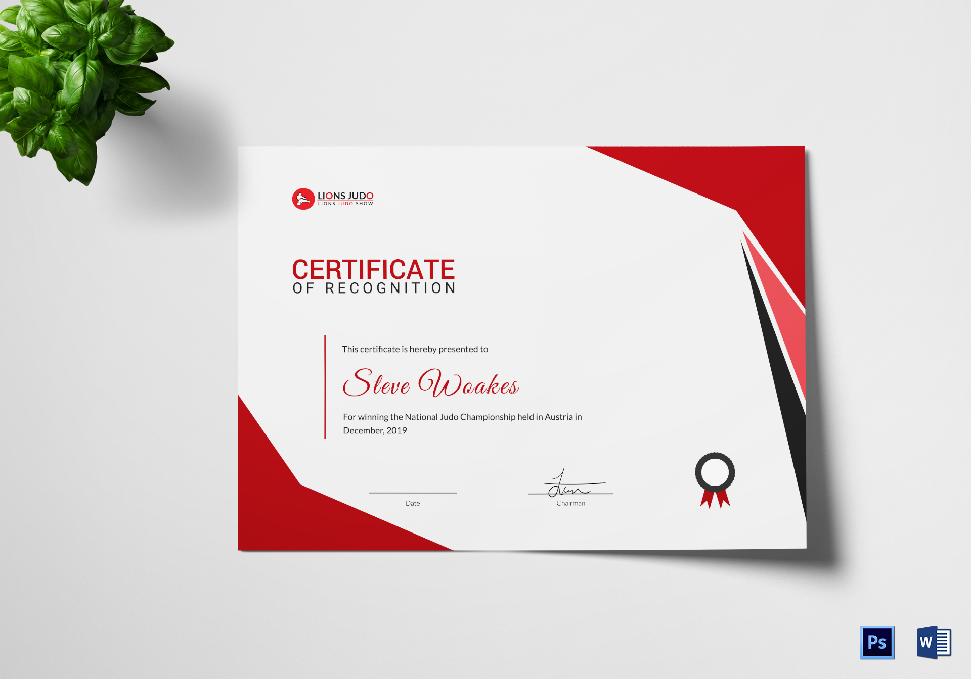 Recognition Certificate Templates