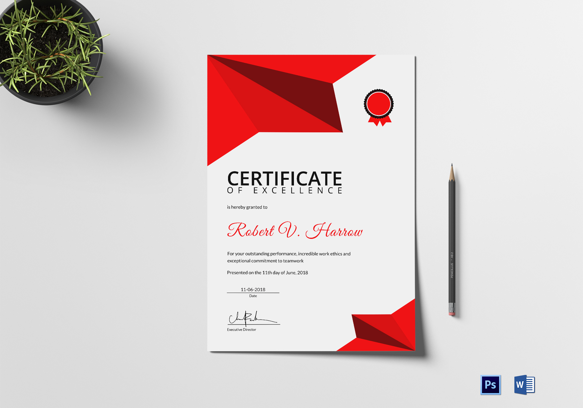 Sample Certificate of Coach Excellence