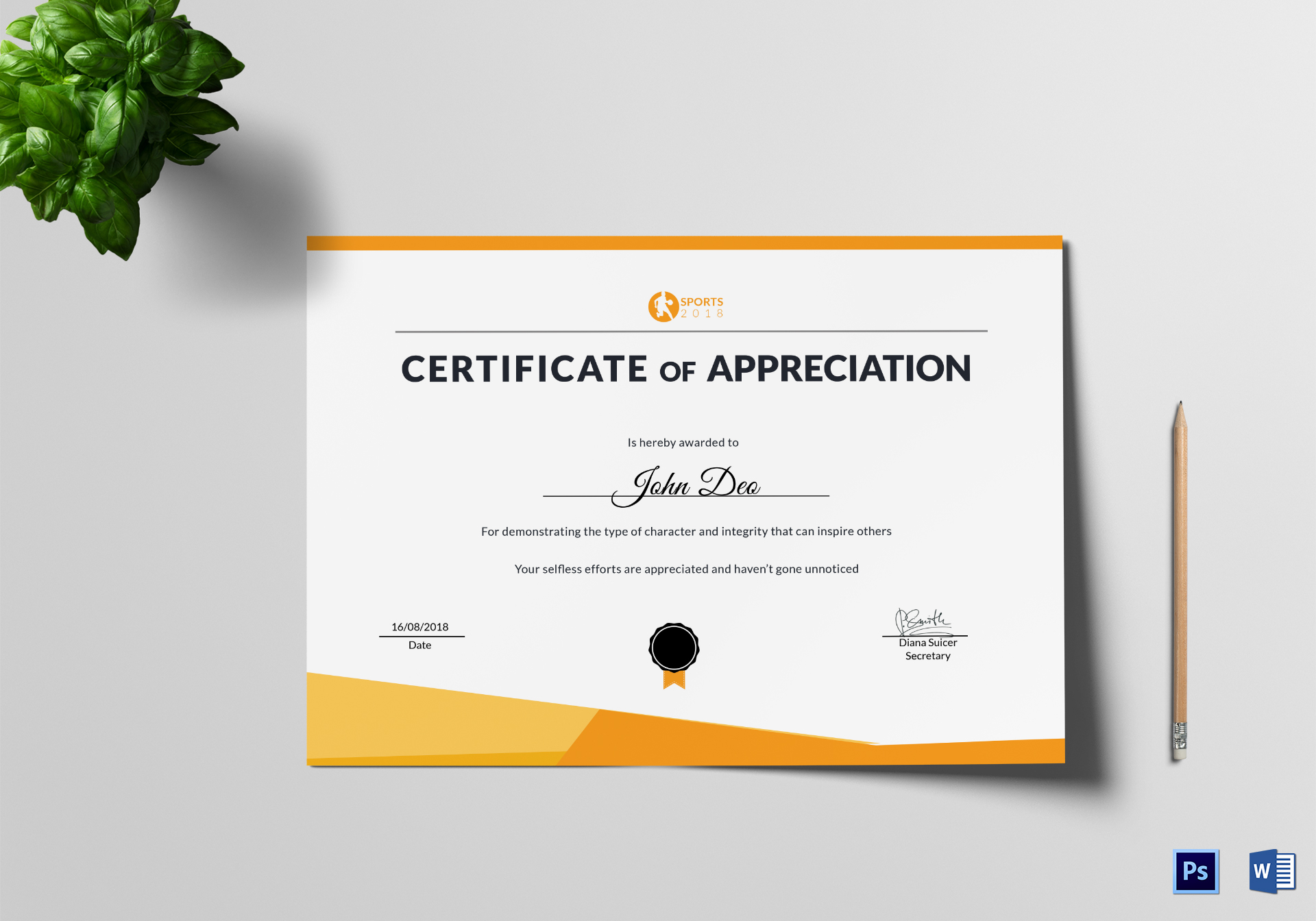 Sportsmanship Appreciation Certificate Template