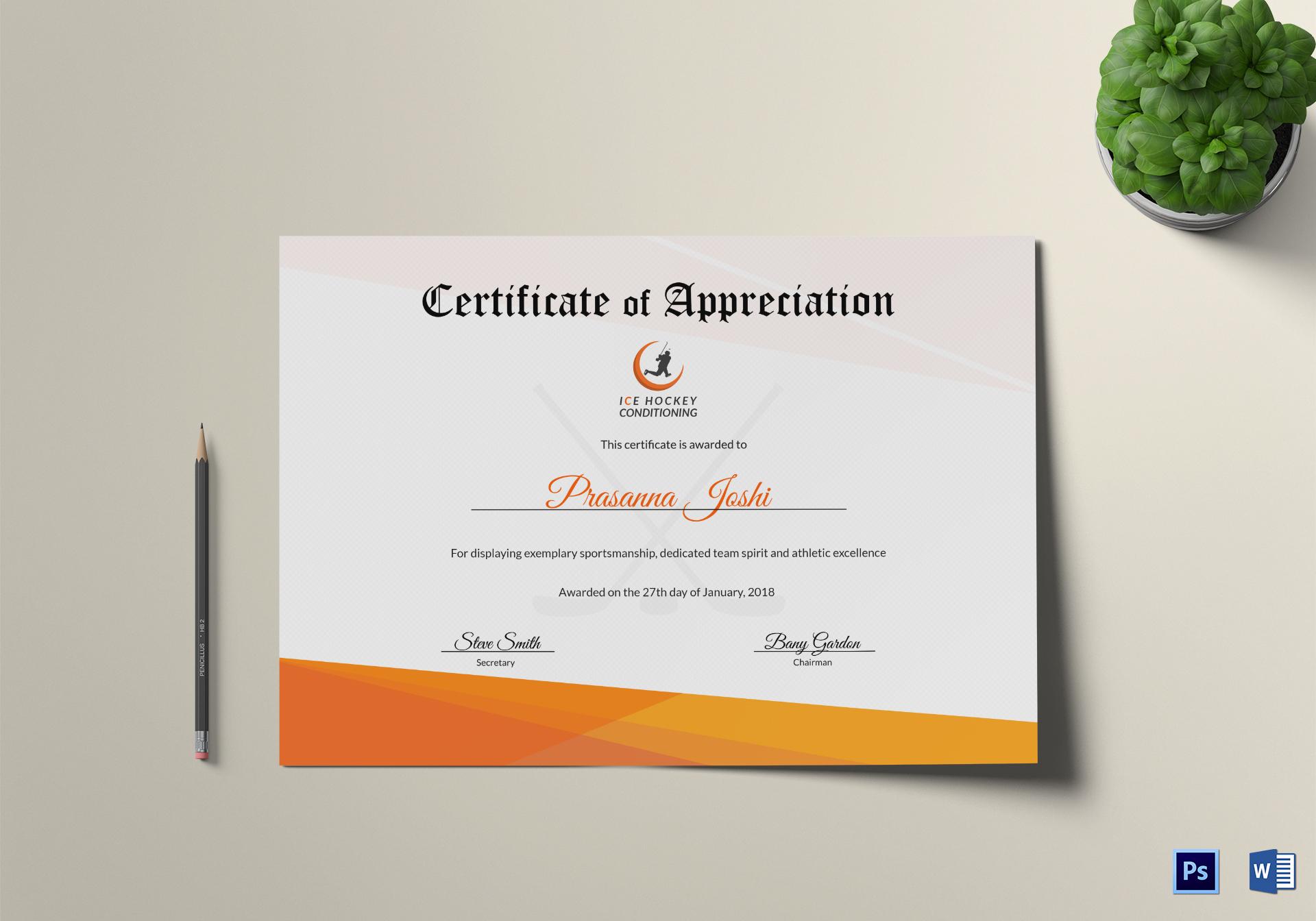 Certificate of Hockey