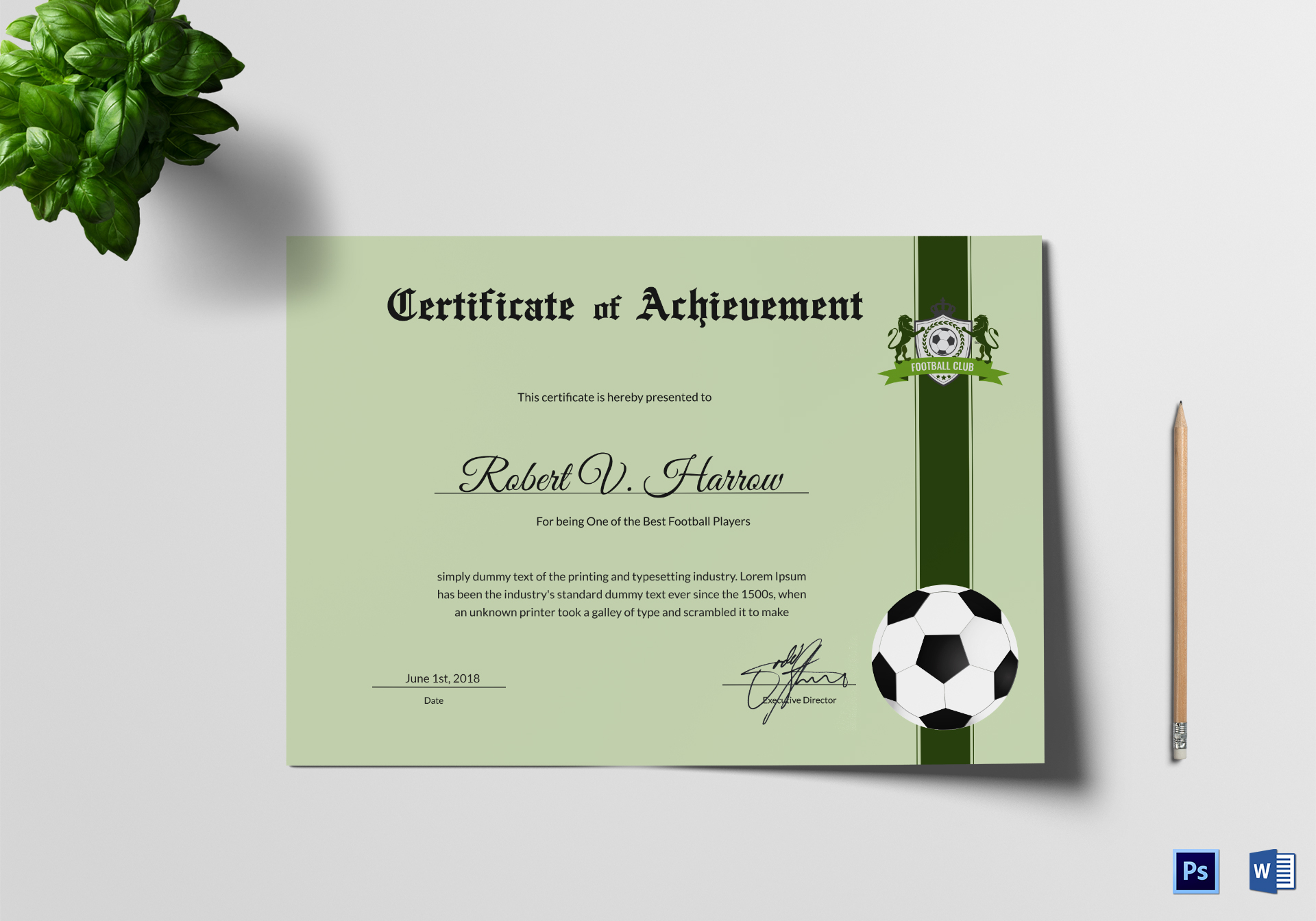 Football Achievement Award