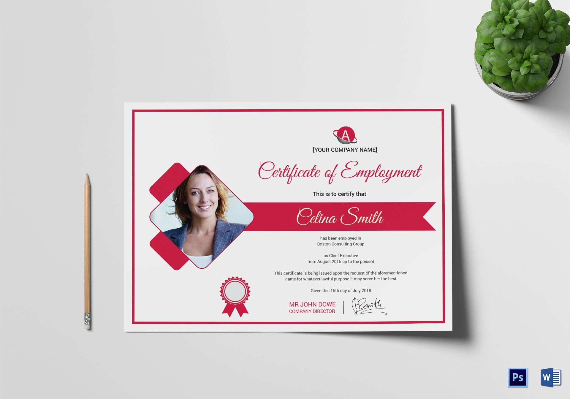 Innovative Employment Certificate Template