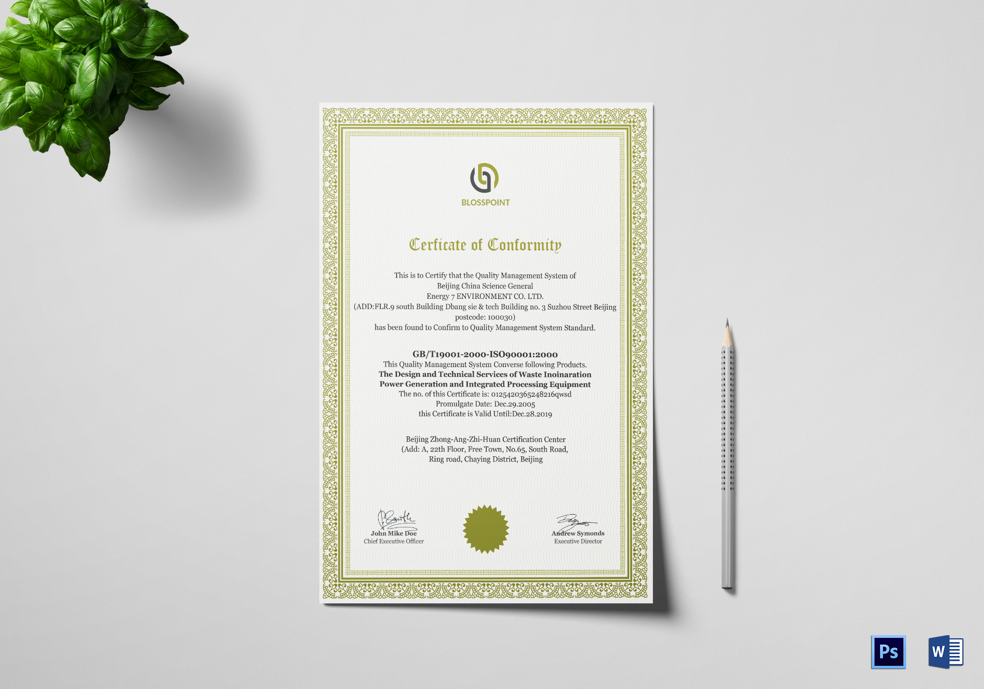 Simple Conformity Certificate Template