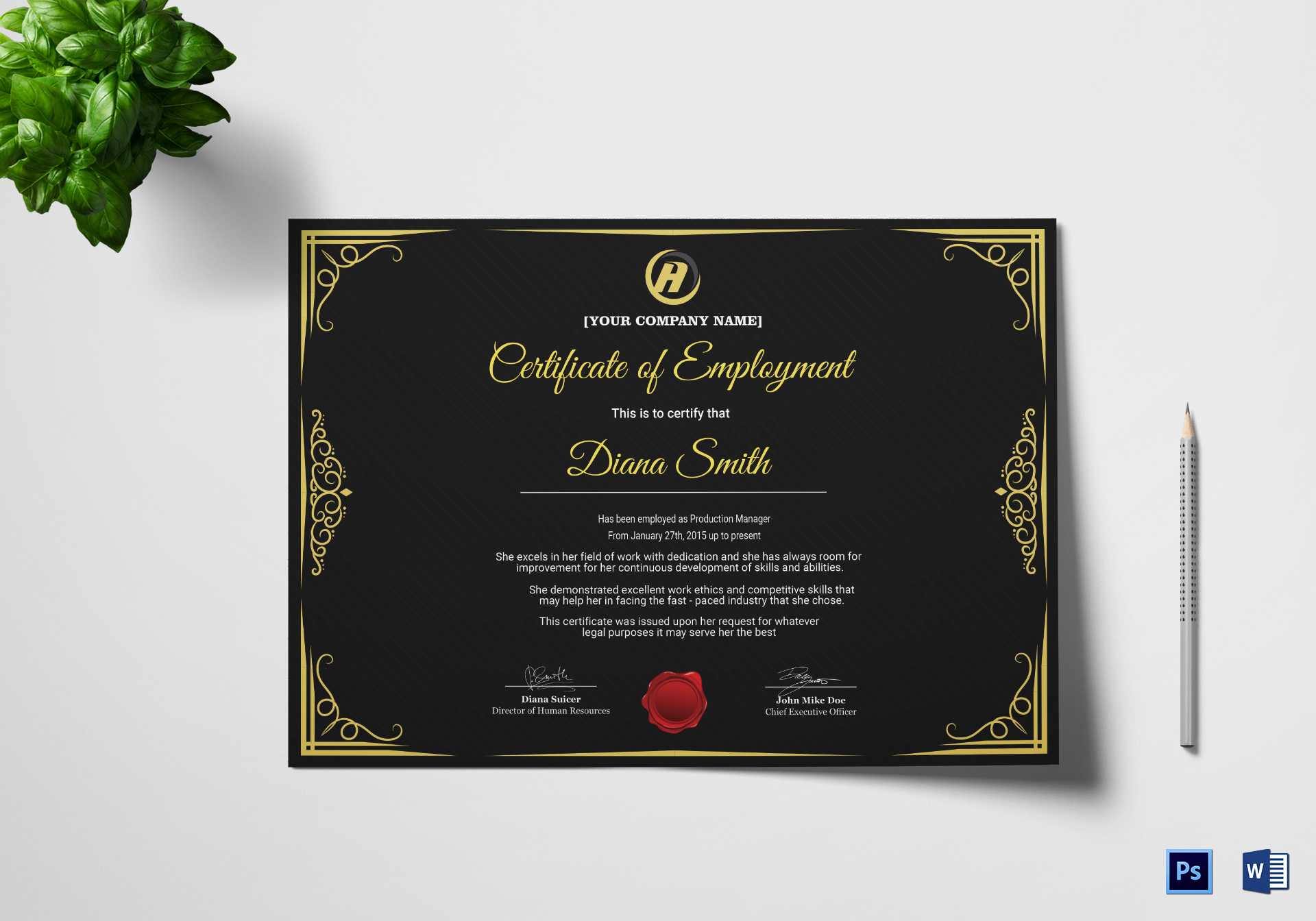 Qualified employment certificate design template in psd word qualified employment certificate template yelopaper Image collections