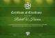 Engineering Football Certificate Template