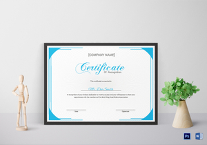 /1155/Youth-Certificate-of-Recognition