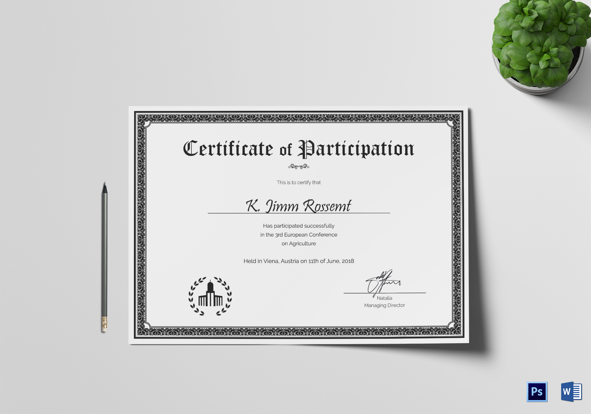 Conference Participation Certificate