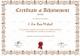 Badminton Participation Achievement Certificate Template