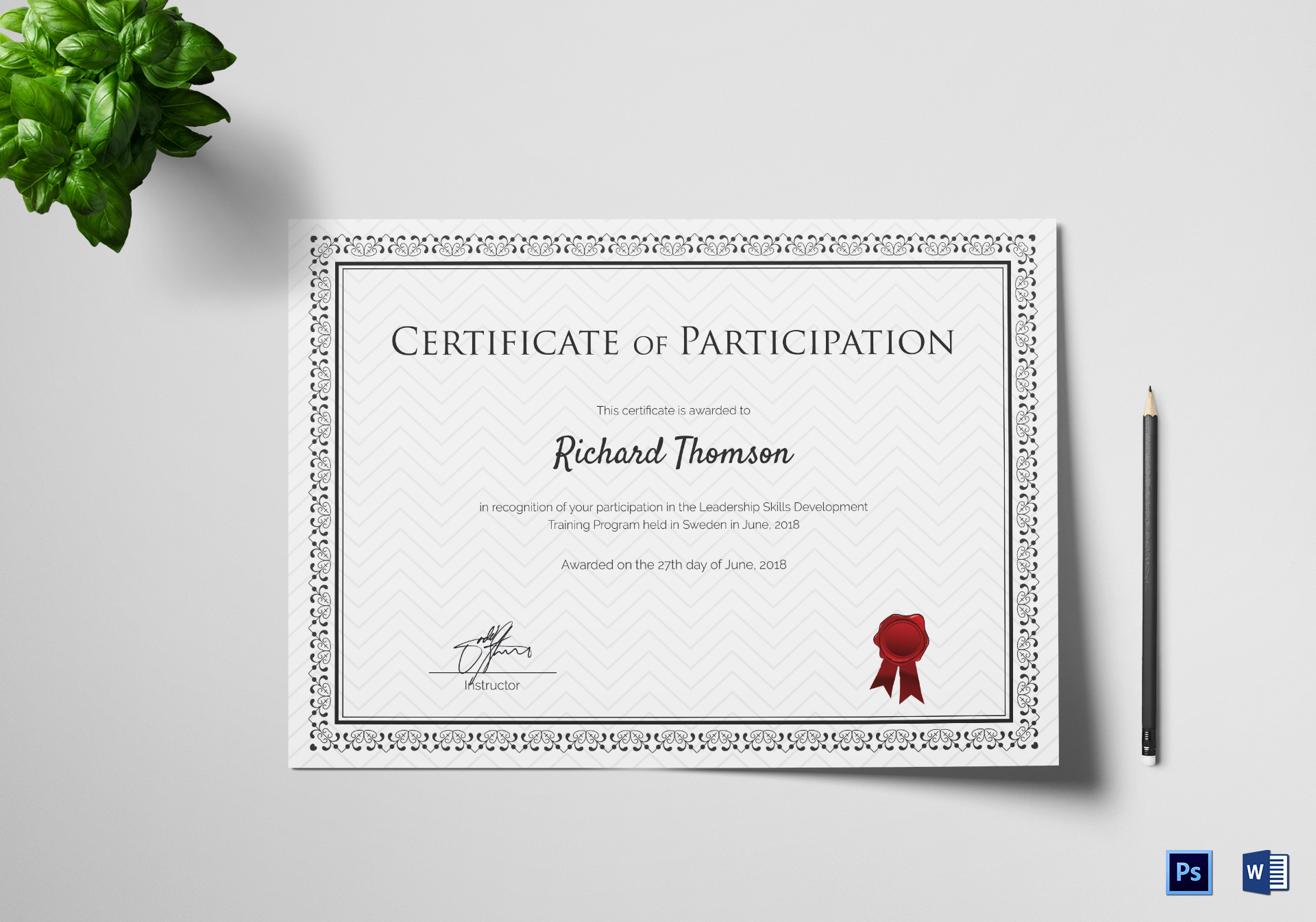 Training Participation Certificate