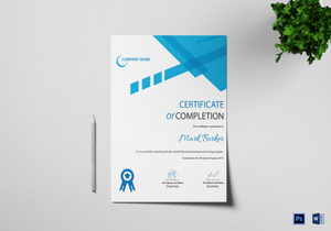 professional certificate designs templates in word psd