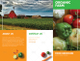 Food Brochure Design Template
