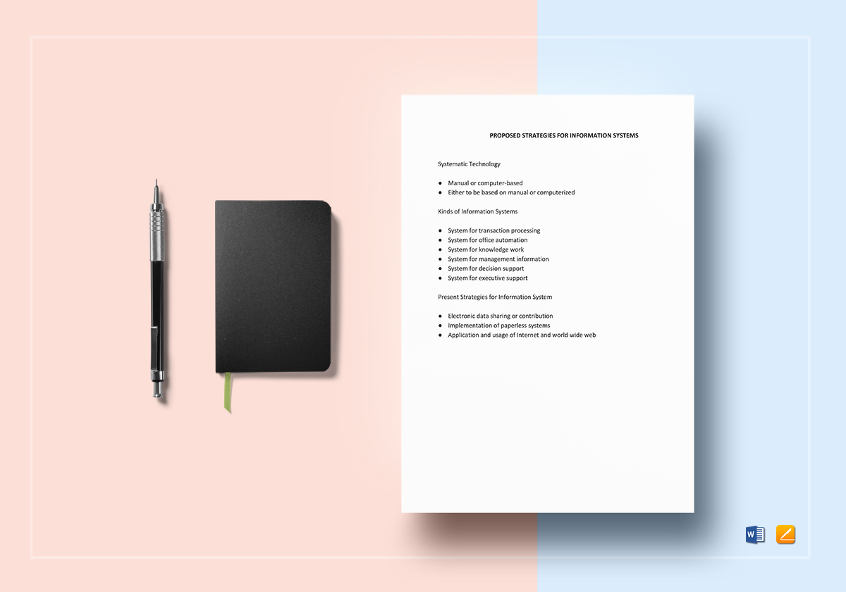 Checklist Possible Information Systems Strategies