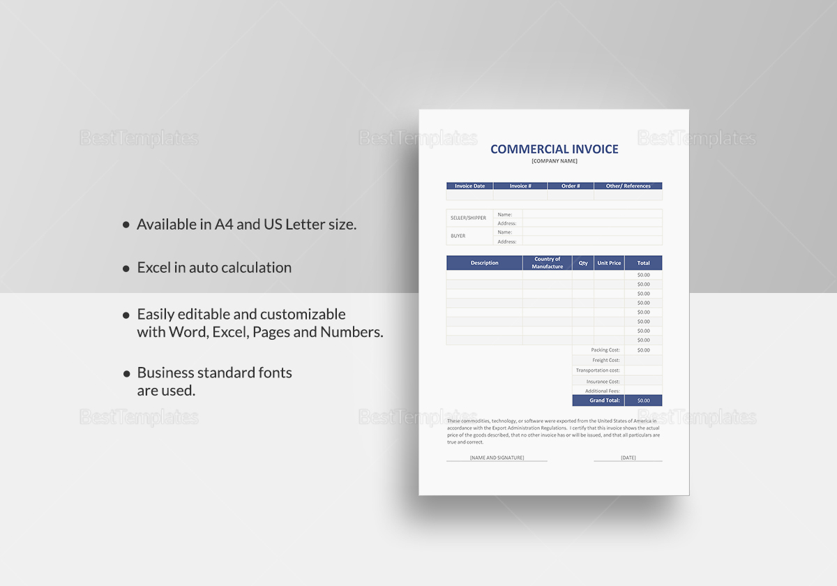 Invoices Advocatevoice Template Word Consultant domino developer ...