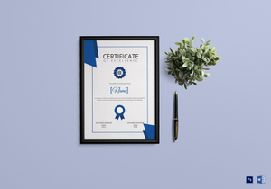 /2623/Sailing-Certificate-4-copy