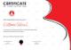 Yoga Award Certificate Design Template