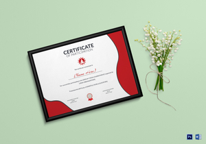 /2633/Yoga-Certificate-4-copy
