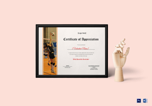 /2637/Volleyball-Certificate-Standing-copy