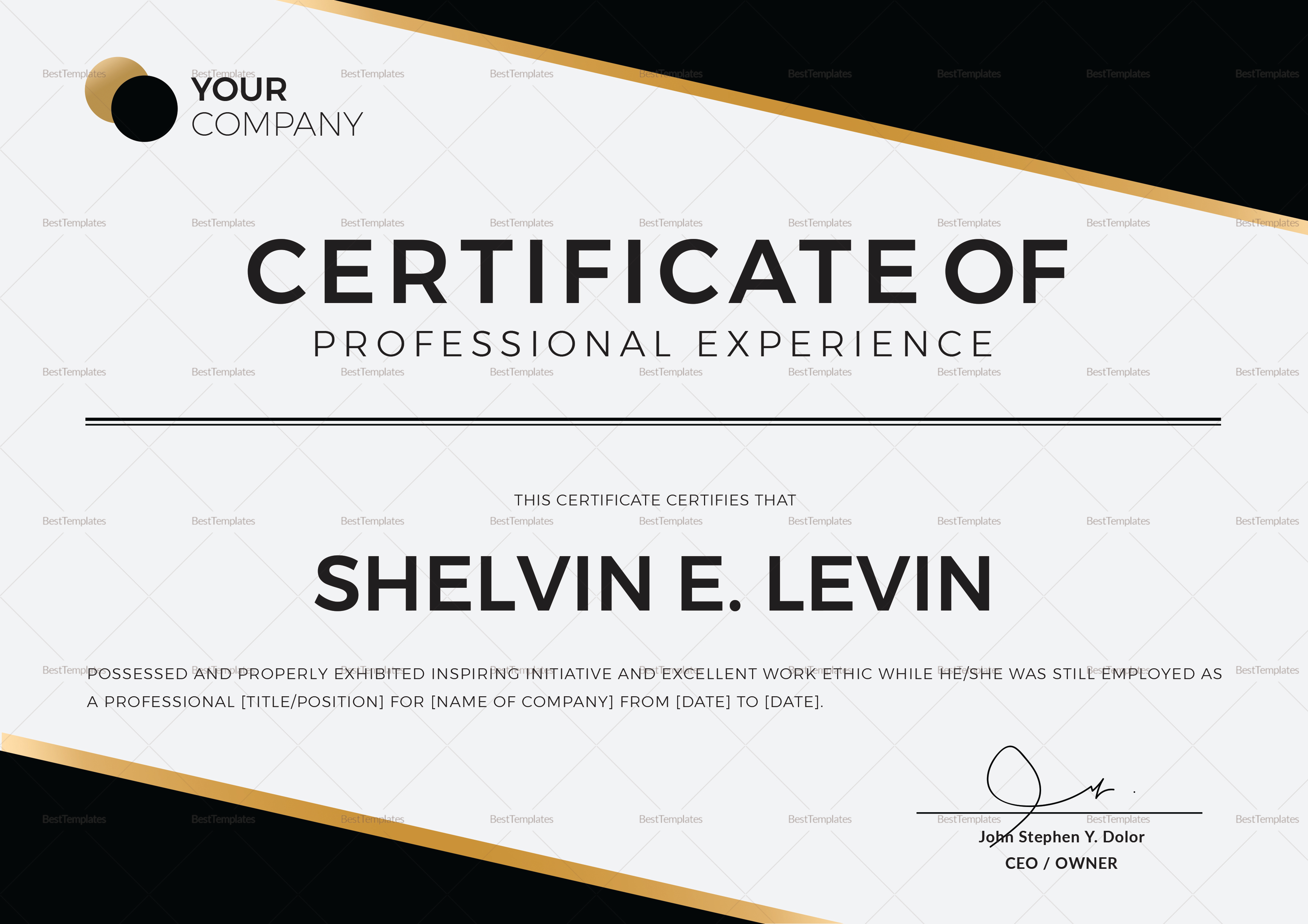 Professional Experience Certificate Template In Psd Word