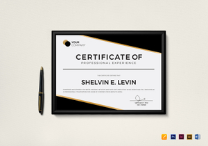 /2746/Professional-Experience-Certificate-Mockup--1-