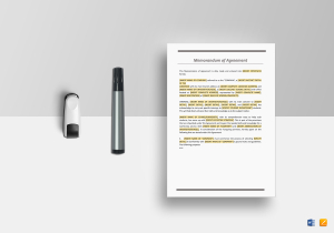 /3147/Memorandum-of-Agreement--Mock-up