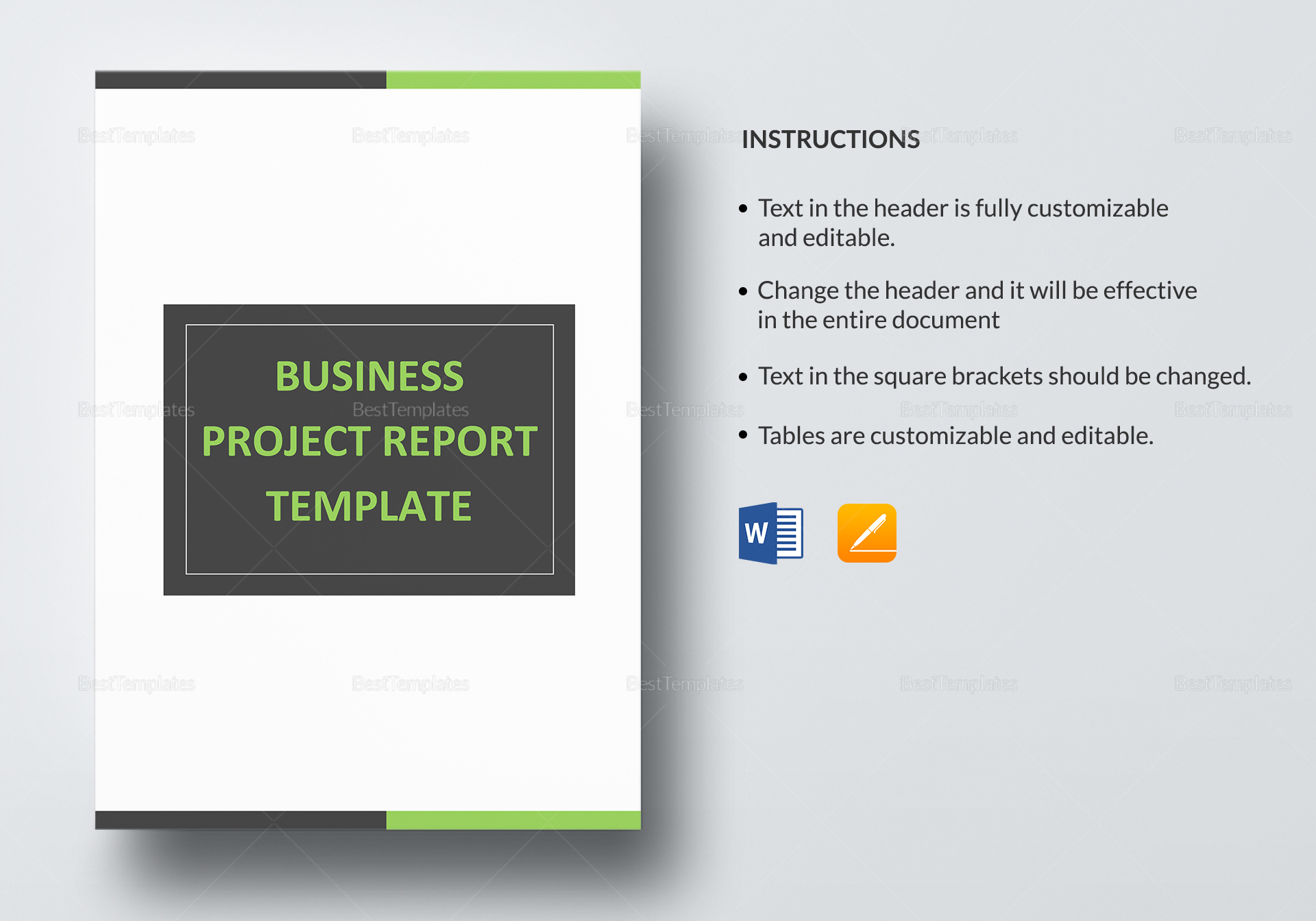 Sample Business Project Report Template