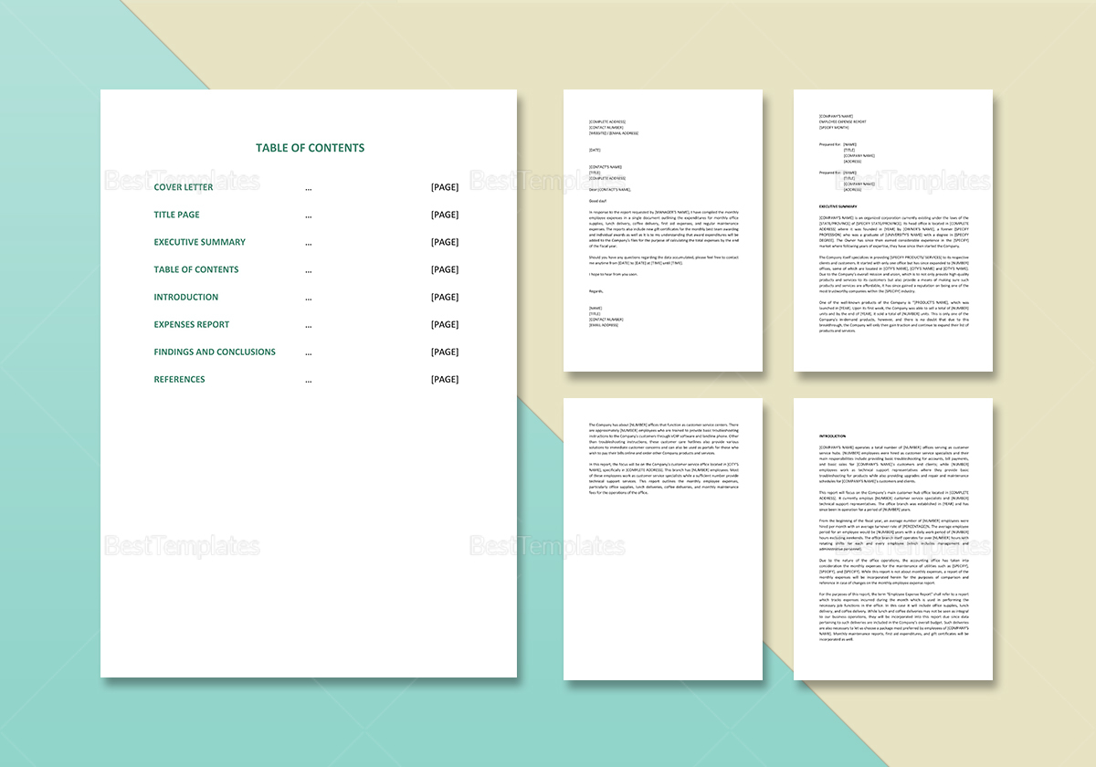 Editable Employee Expense Report Template
