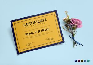 /3346/Training-Certificate-Mockup