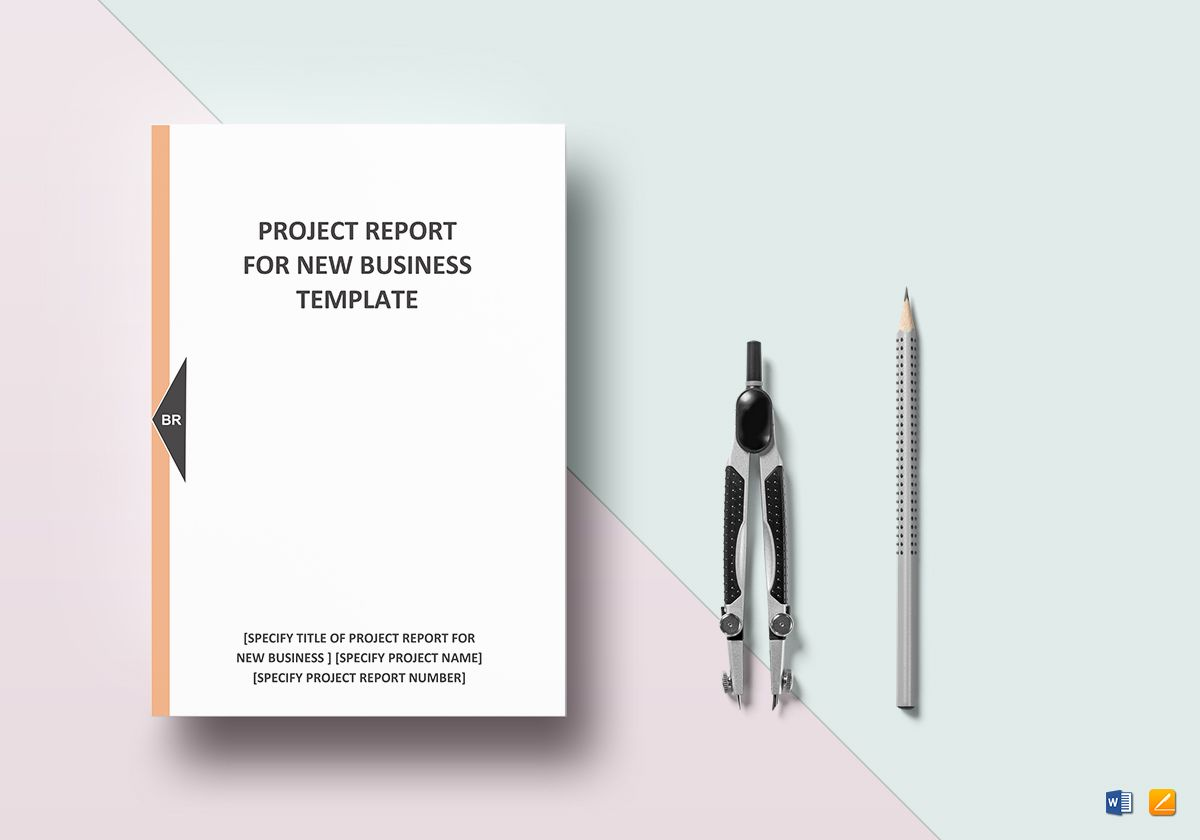 New Business Project Report