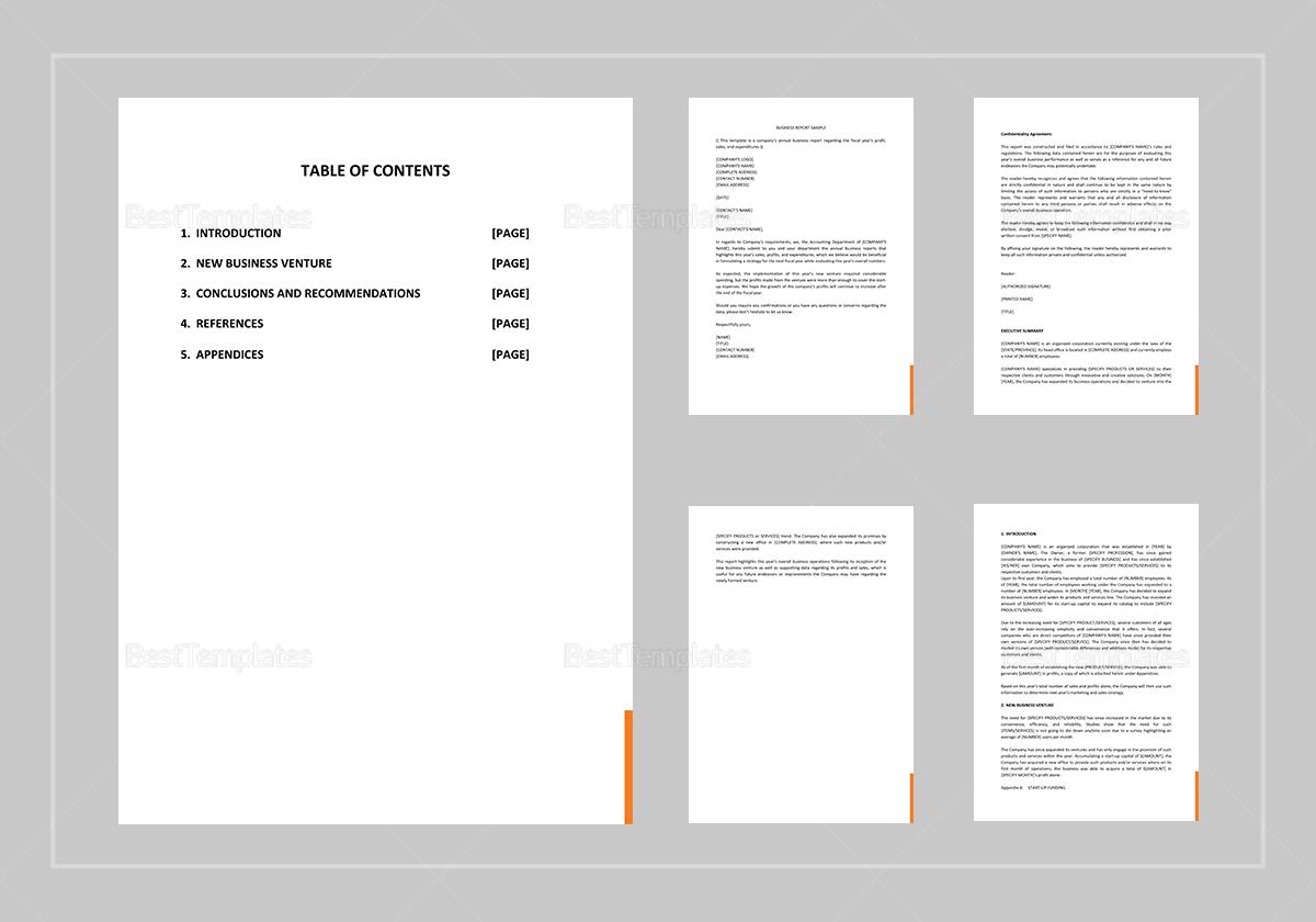 Sample Business Report