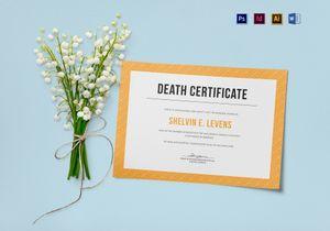 /3523/death-certificate-template-mockup