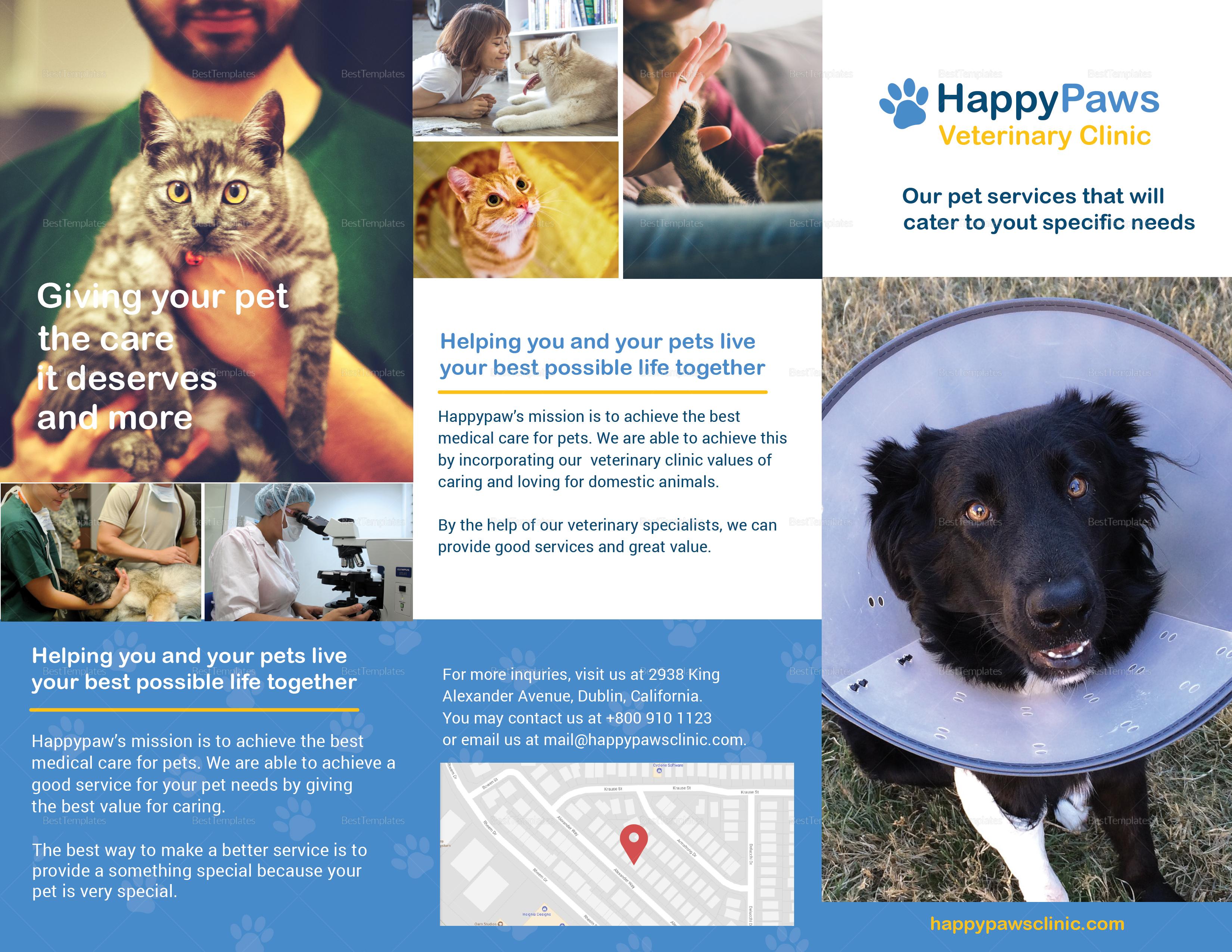 veterinary brochure design template in psd  word