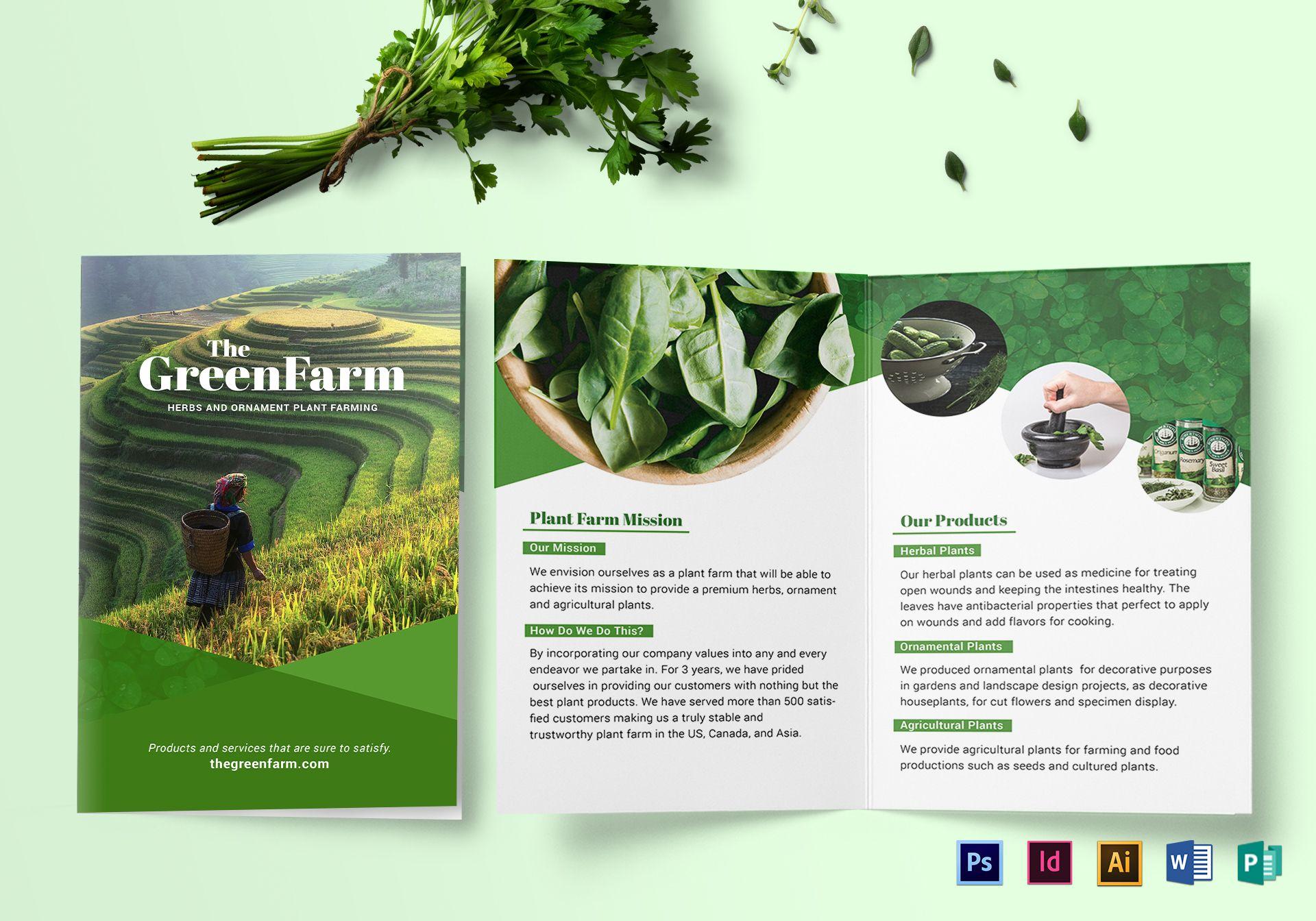 Bi-fold Green Brochure