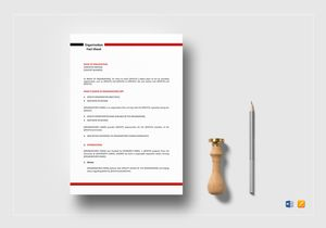 /3572/organization-fact-sheet-template-Mockup