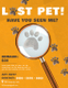 Simple Lost Pet Flyer