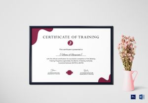 /3727/Certificate-of-Scating-Training-Mockup
