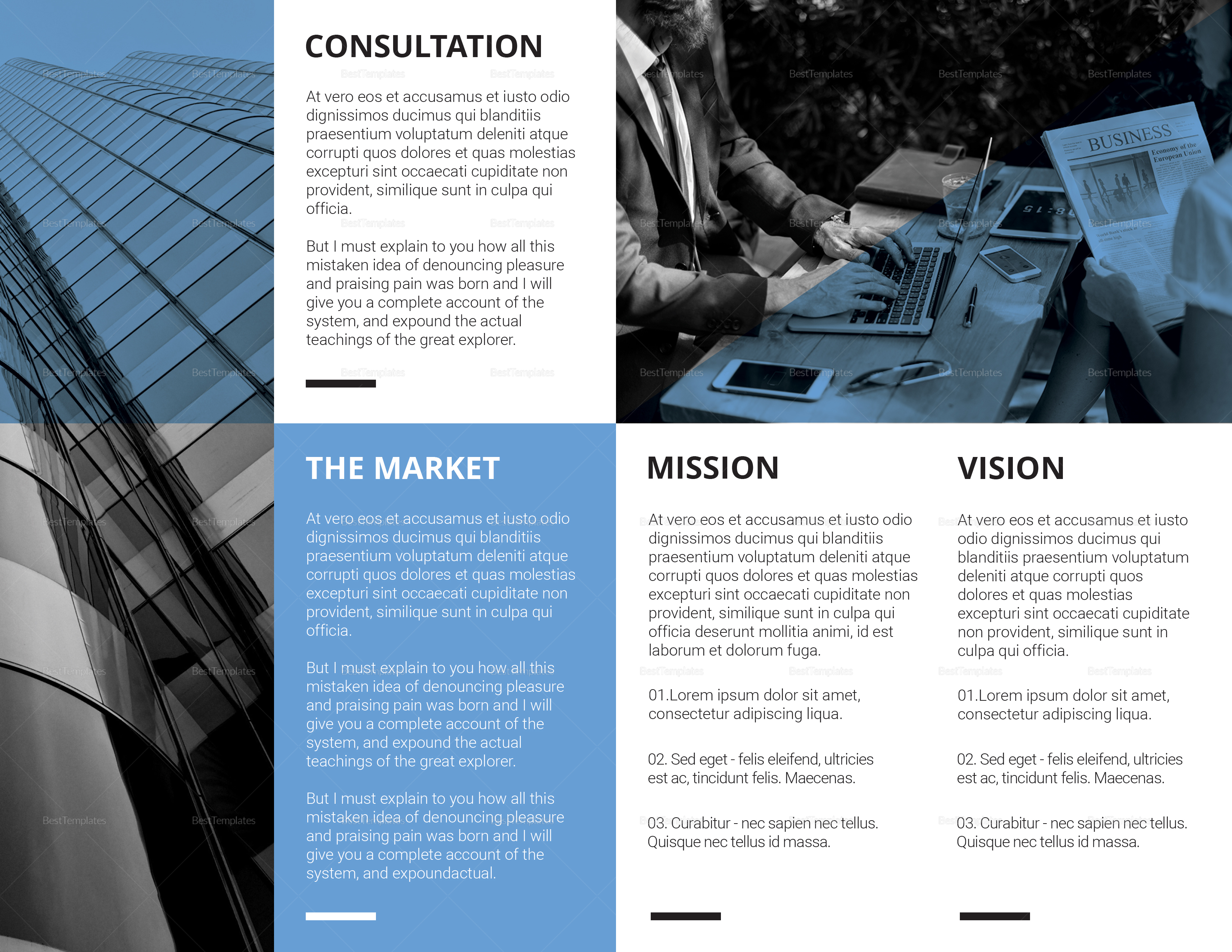 Sample Business Consulting Bi fold Brochure