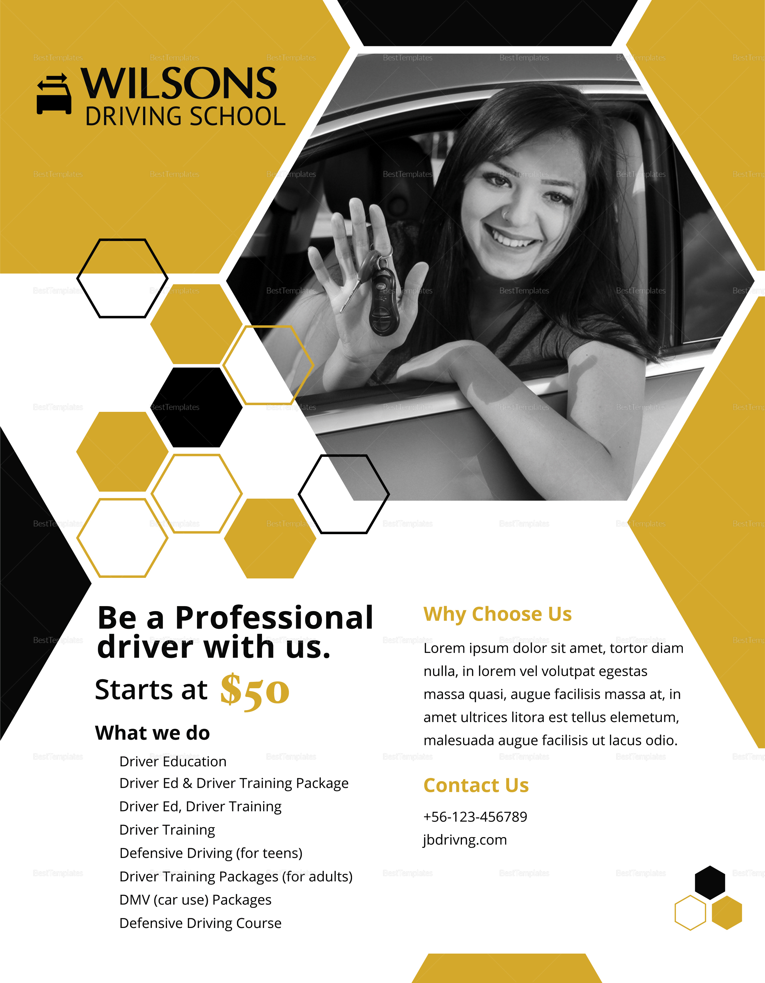 Professional Driving School Flyer