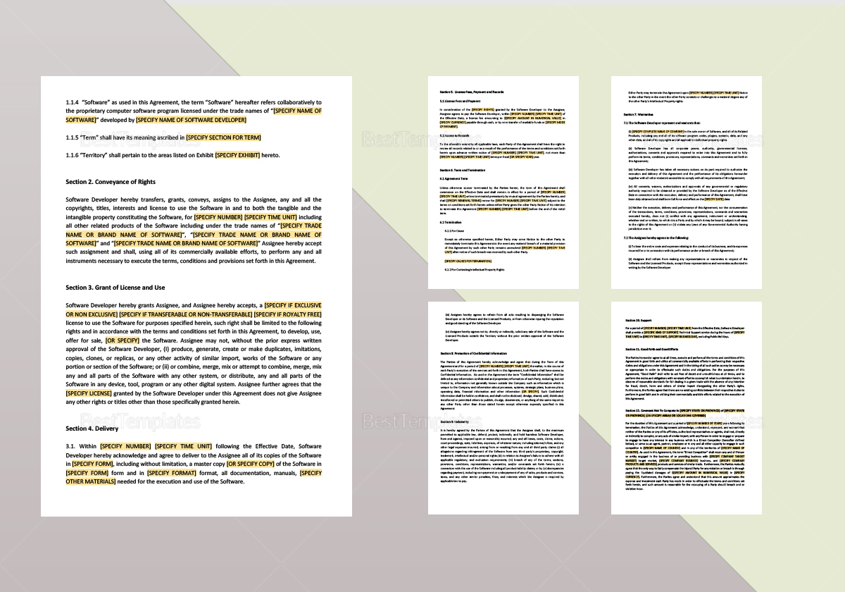 Sample Assignment of All Rights in Computer Software Template