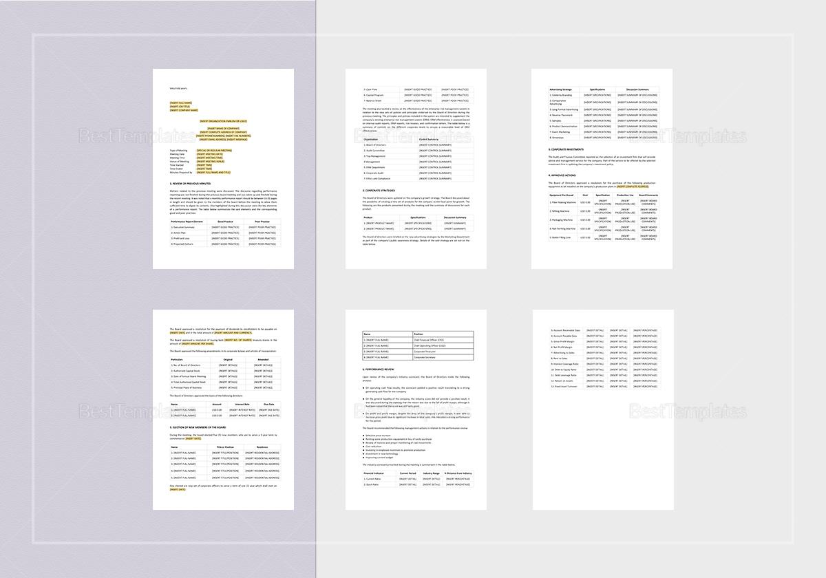 Sample Board Meeting Report Template