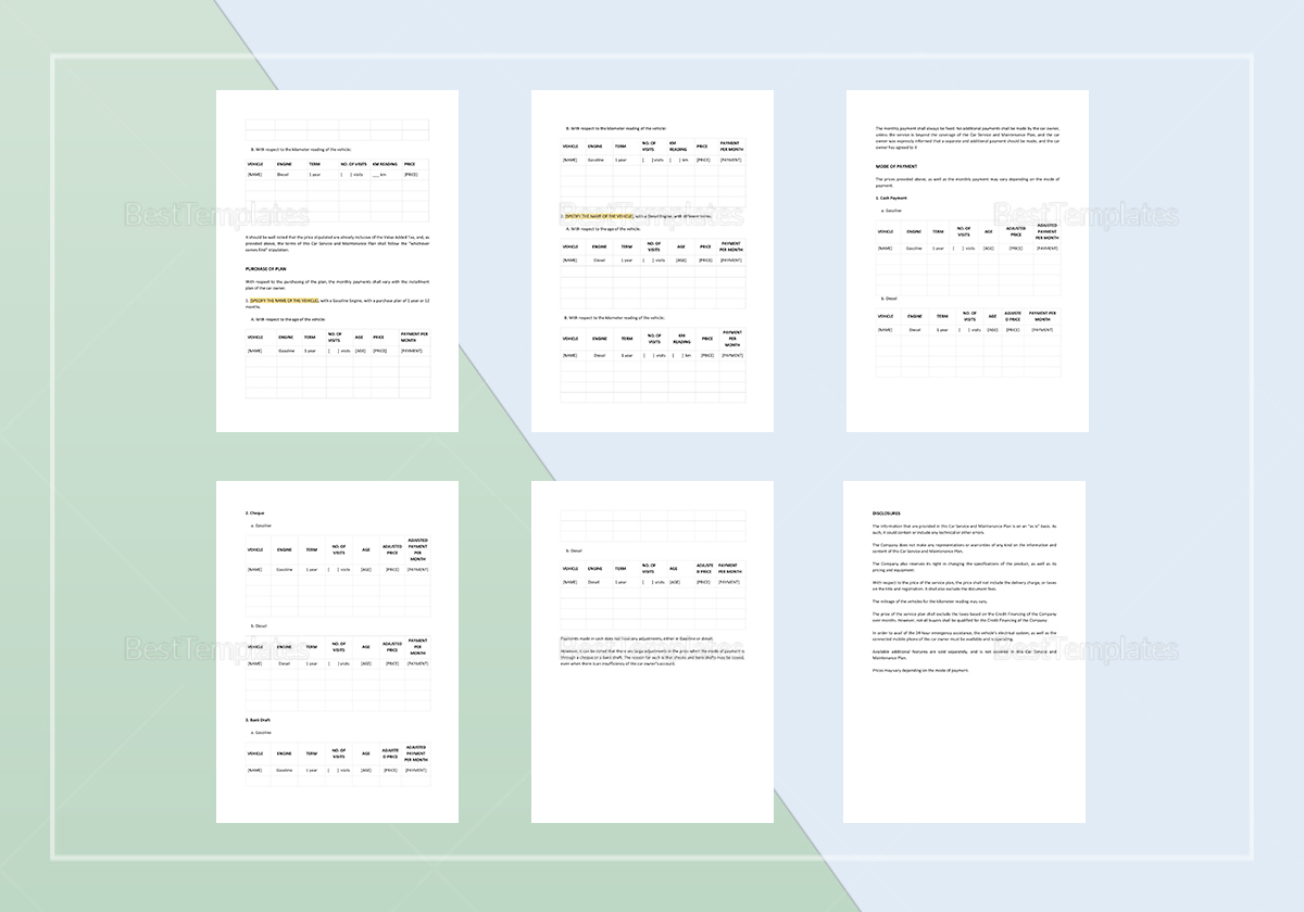Service Plan Template to Edit