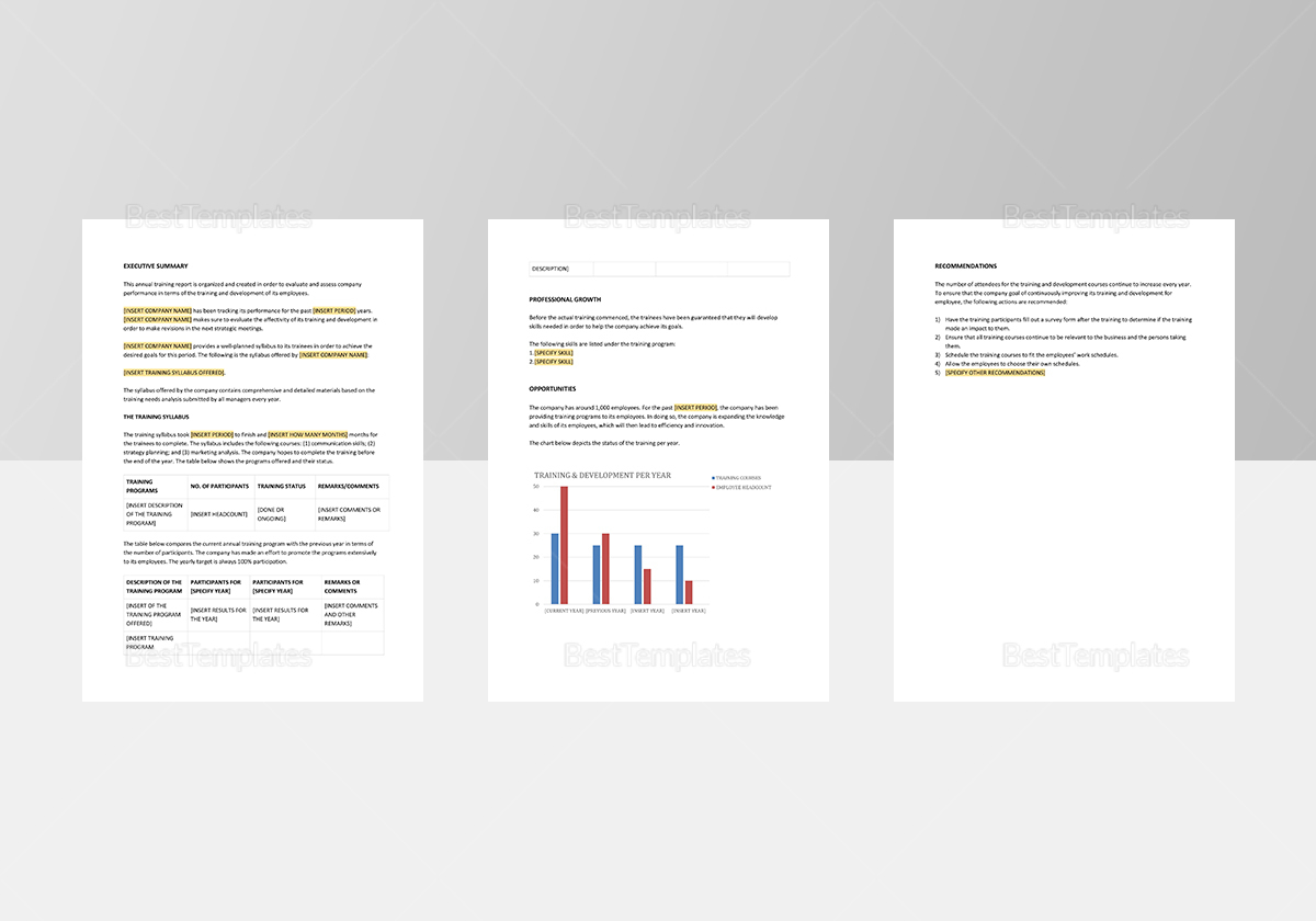 Annual Training Report Template to Edit