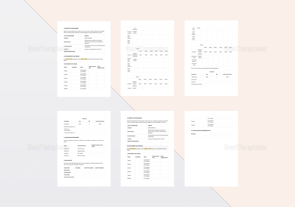 Simple Real Estate Project Report Template