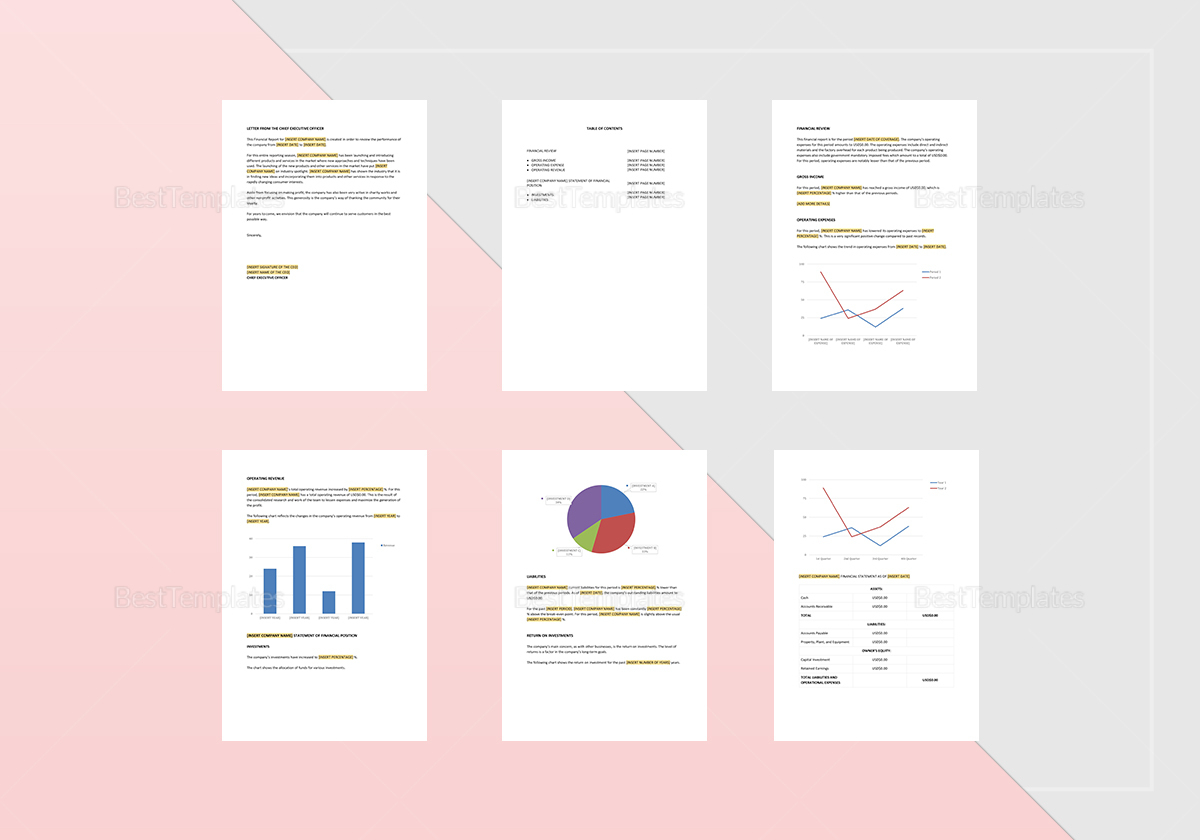 Editable Financial Report Template