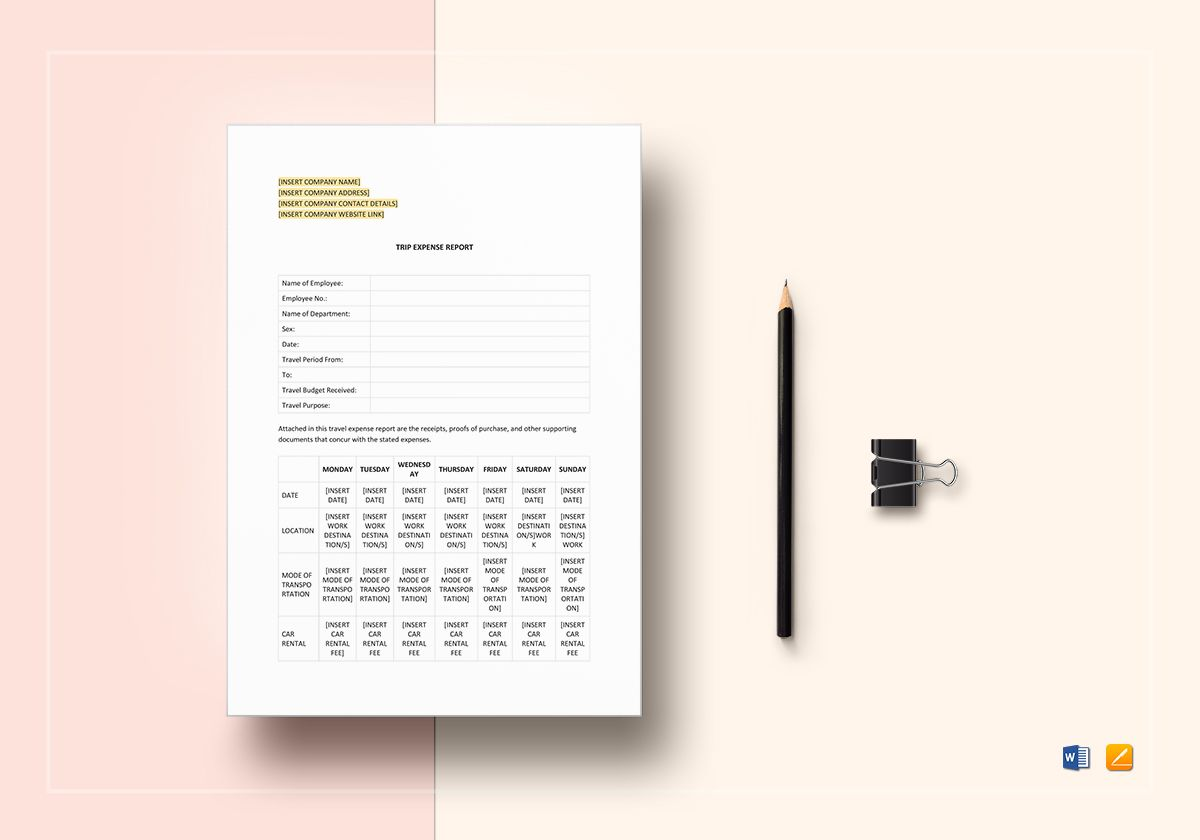Trip Expense Report Template