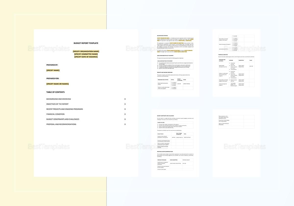 Sample Budget Report Template