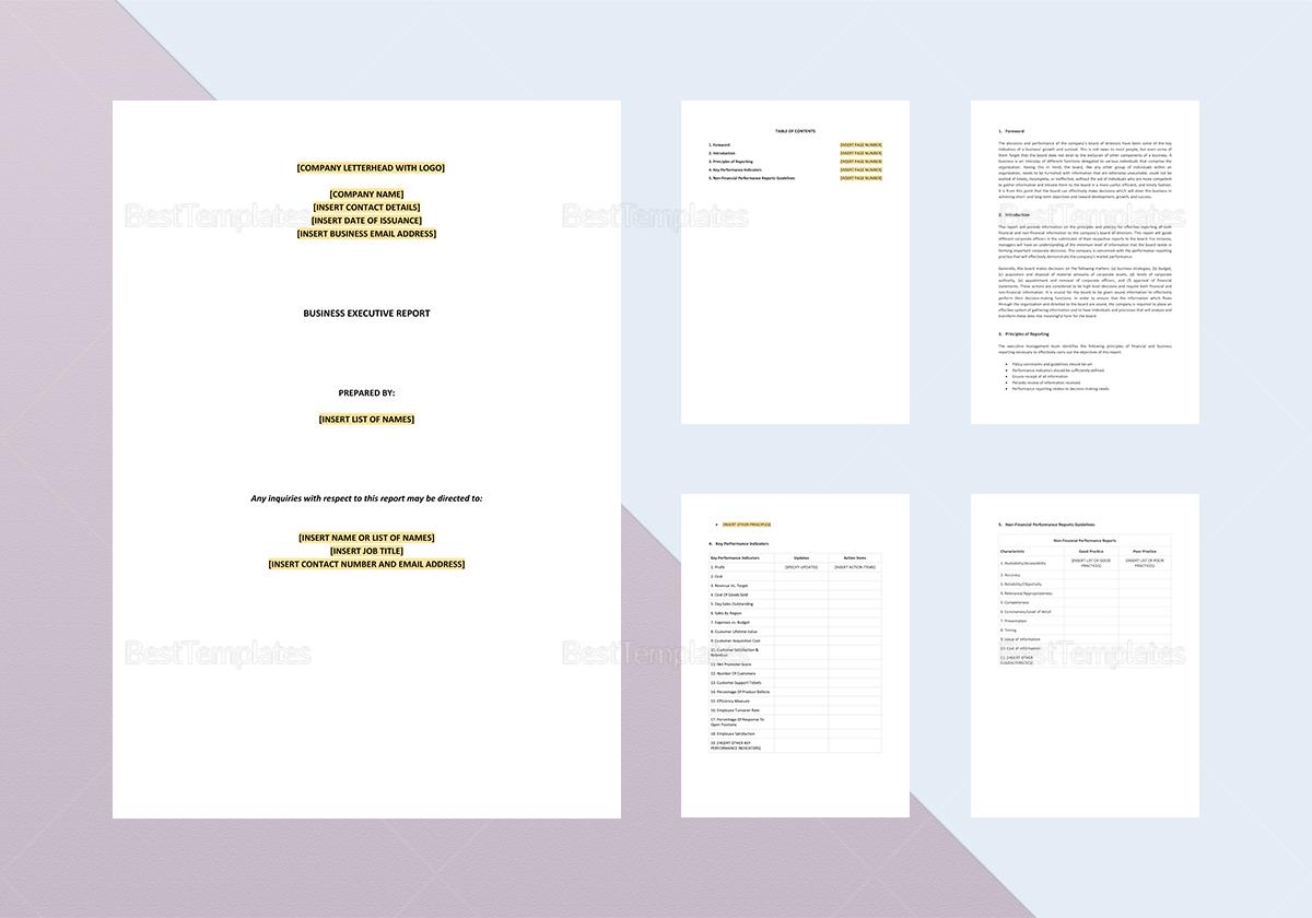 Business Executive Report Template