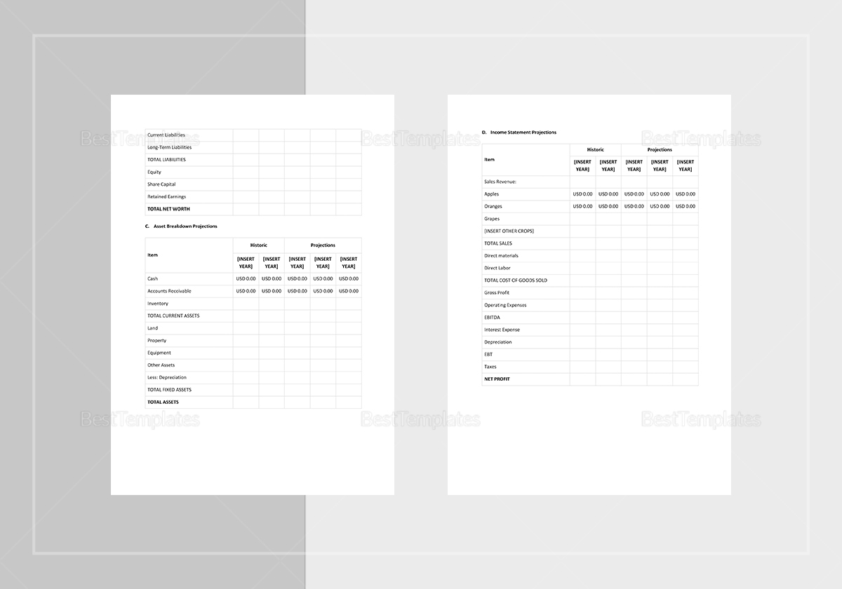 Sample Business Growth Plan Template