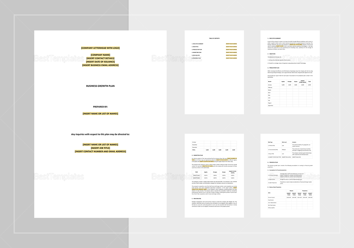 Business Growth Plan Template