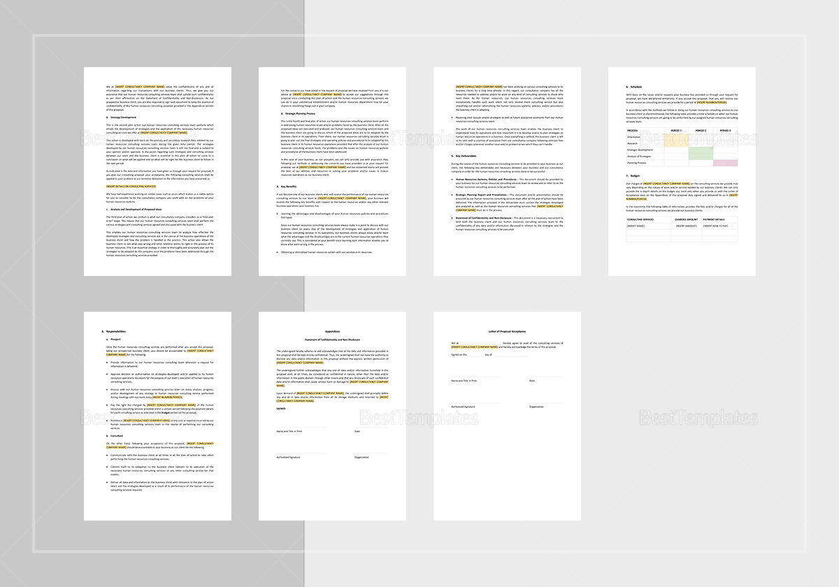 Editable HR Consulting Proposal Template